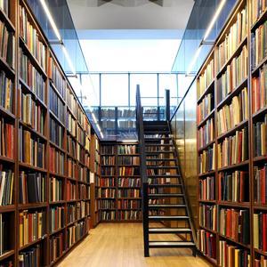 Библиотеки Шенкурска