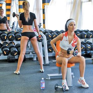 Фитнес-клубы Шенкурска
