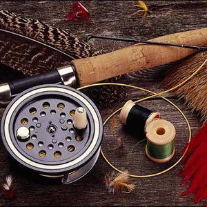 Охотничьи и рыболовные магазины Шенкурска