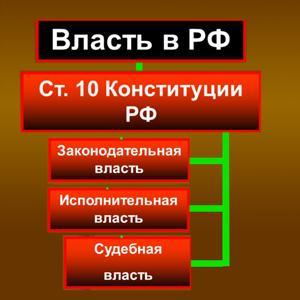 Органы власти Шенкурска