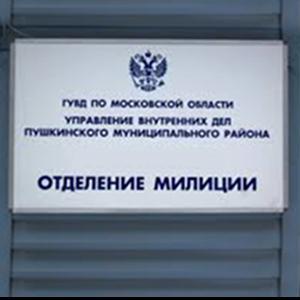 Отделения полиции Шенкурска