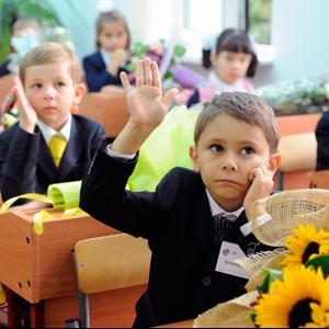 Школы Шенкурска
